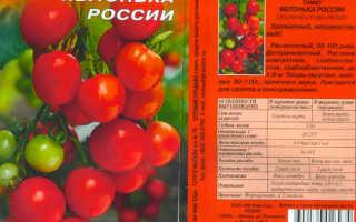 Помидоры яблонька россии описание