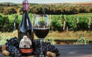 Виноград пино нуар описание сорта