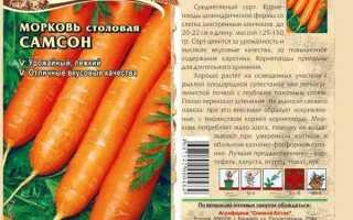 Морковь самсон характеристика сорта фото отзывы описание
