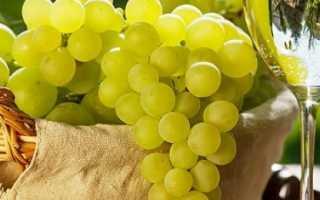 Чем отличаются винные сорта винограда от столовых