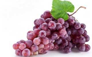 Краткая история винограда
