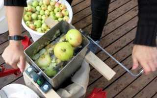 Измельчитель для яблок купить или сделать своими руками