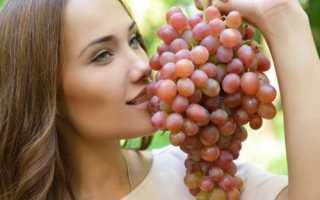 Сладкие виноградные сорта обзор с фото