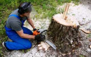 Корчевание деревьев на участке своими руками