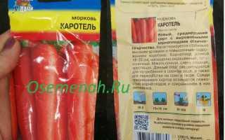 Морковь каротель описание сорта