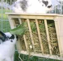 Как сделать кормушку для кроликов из дерева
