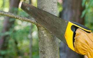 Садовая пила для обрезки деревьев как правильно выбрать
