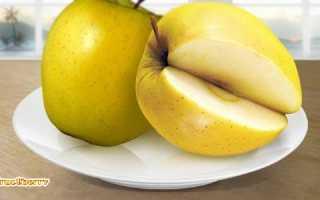 Яблоки голден описание сорта подвиды особенности выращивания